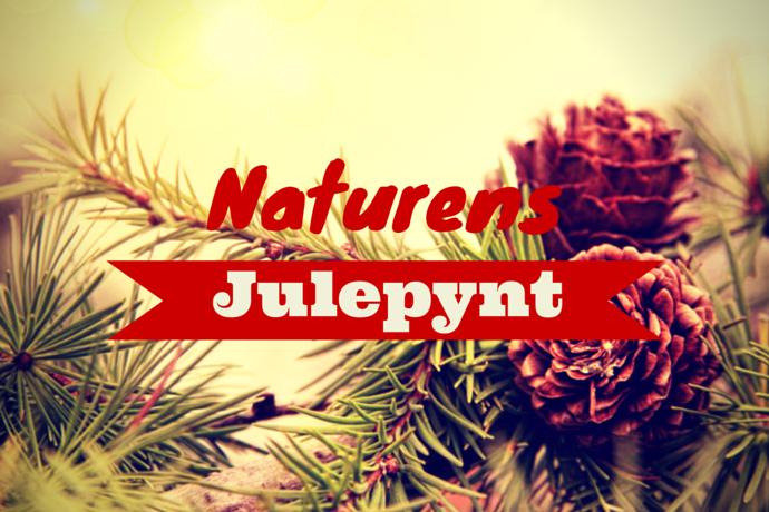 Hjemmelavet julepynt fra naturen